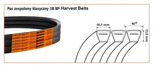PAS HARVEST BELTS 3B BP/H-1670 BI 9725-11511